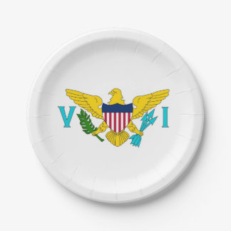 Patriotic paper plate with Virgin Islands flag