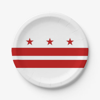 Patriotic paper plate with Washington DC flag