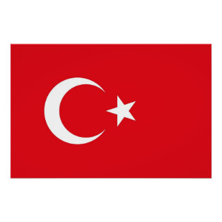 Patriotic poster with Flag of Turkey Perfect Poster