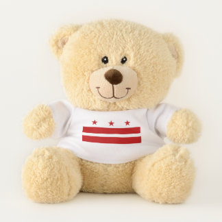 Patriotic Teddy Bear flag of Washington DC, USA