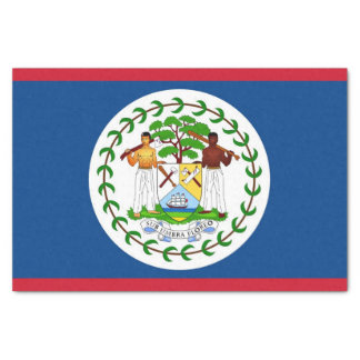 Patriotic tissue paper with flag of Belize