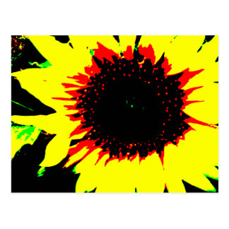 Patsy and Mandy Sunflower Postcard