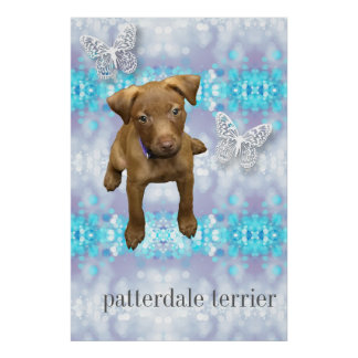 Patterdale Terrier Puppy Poster - Butterflies