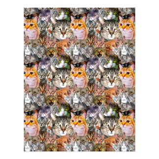 Pattern Cats Letterhead
