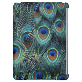 Pattern in male peacock feathers iPad air case