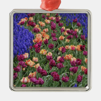 Pattern of tulips and Grape Hyacinth flowers, Silver-Colored Square Ornament