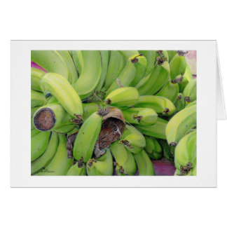 "Paul McGehee ""Bananas"" Card"