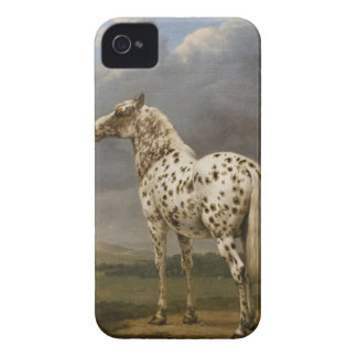 "Paulus Potter - The ""Piebald"" Horse. Vintage Image iPhone 4 Case-Mate Cases"