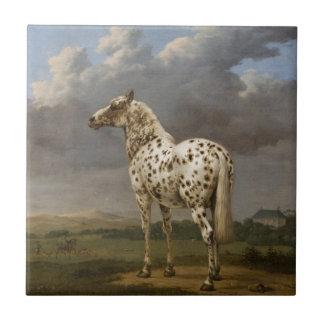 """Paulus Potter - The """"Piebald"""" Horse. Vintage Image Tile"""
