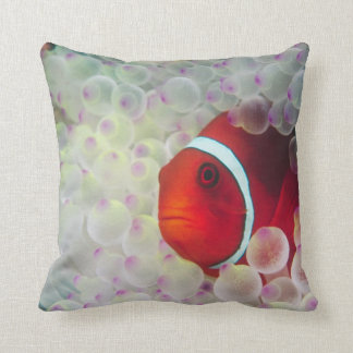 Paupau New Guinea, Great Barrier Reef, Throw Pillow
