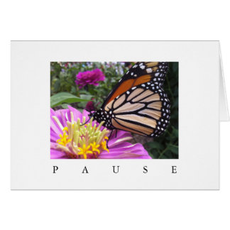 Pause Card: Monarch on Pink Zinnia Card