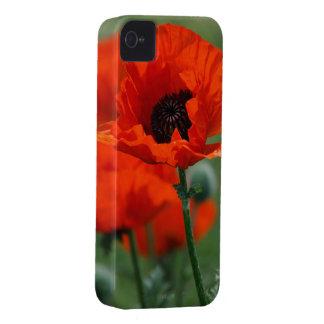 Pavot rouge coque Case-Mate iPhone 4