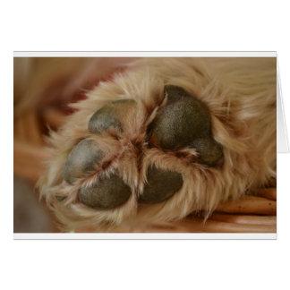 Paw Greeting Card
