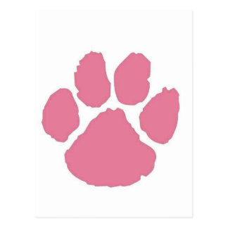 Paw Post Cards