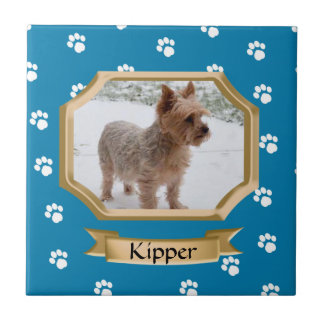 Paw Print Pet Photo Blue Tile