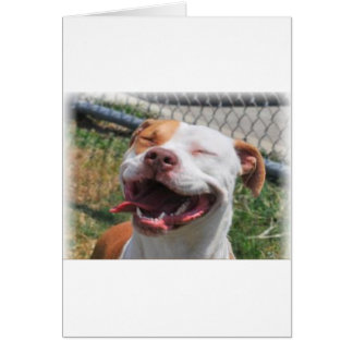 Paw Prints Greeting Cards