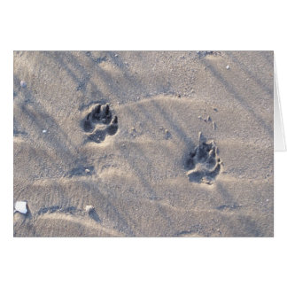 Pawprints in the Sand Card