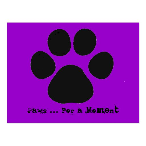 Paws For a Moment Postcard (purple)