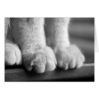 Paws of Legend Greeting Card