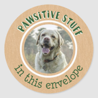 Pawsitive Stuff Sticker