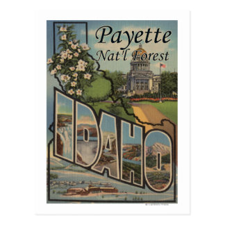 Payette Nat'l Forest, Idaho - Large Letter Scene Postcard