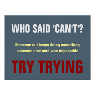 Payne s Grey White Red Who Said Can t Quote Print