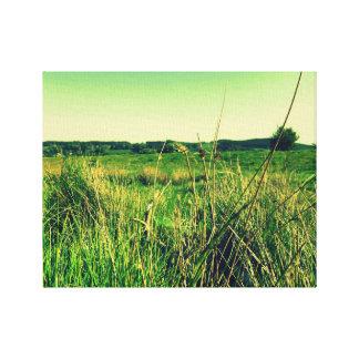 Paysage anglais herbeux toiles tendues