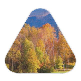 Paysage au Vermont