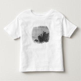 Paysage avec le buffle d'eau, dynastie de chanson tee shirts