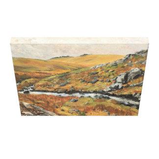 Paysage de Dartmoor une vue des massifs de roche Toiles Tendues
