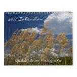 Paysages marins et paysages - calendrier 2011
