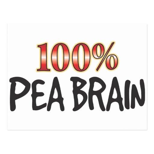 Pea Brain 100 Percent Postcard
