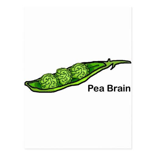 Pea Brain Postcards