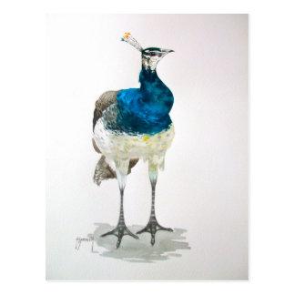 Pea Hen in Watercolour Post Card