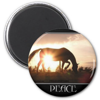Peace at Sunset Magnet
