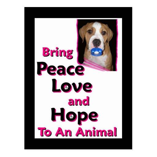 peace hope joy love post card
