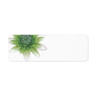 Peace l Beautiful Green Lotus Blank Labels