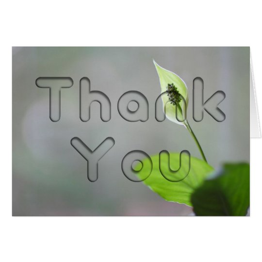 Peace Lily Floral Thank You Card