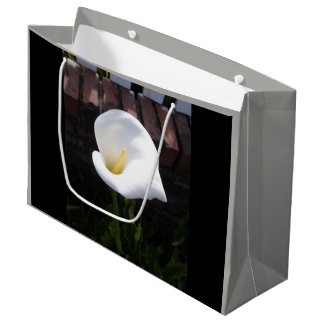Peace Lily Gift Bag