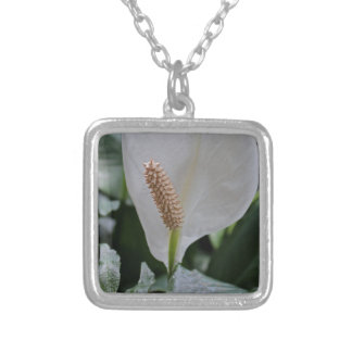 Peace Lily I Silver Plated Necklace