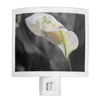 Peace Lily - Selective Color Nite Lights