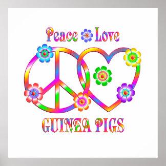 Peace Love Guinea Pigs Poster