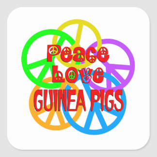 Peace Love Guinea Pigs Square Sticker