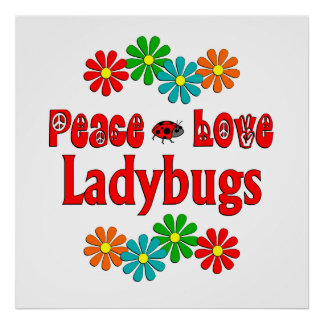 Peace Love Ladybugs Poster
