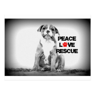 Peace Love Rescue Dog Postcard