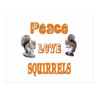 Peace Love Squirrels Postcard