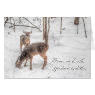 Peace on Earth - Two Deer In Snowy Woods Card