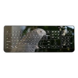 Peaceful African Grey Wireless Keyboard