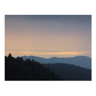 Peaceful Afternoon Blue Mountains Trees Forest Postcards