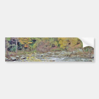 Peaceful Area In The Middle of the Woods Bumper Sticker